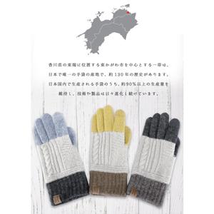 glovesサムネ10